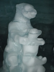 Ice polar bears
