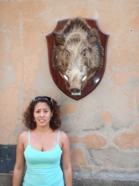 Boar's head on a wall... I am a pescaterian (hence the face)