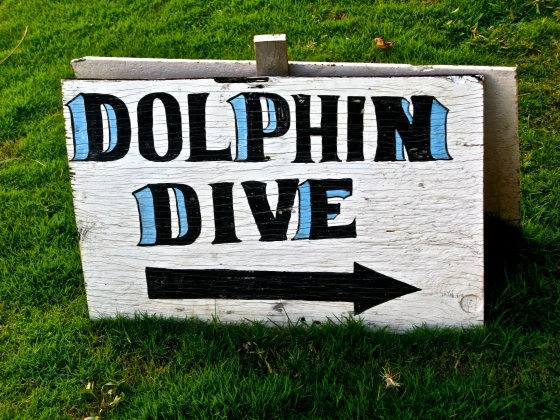 Stayed and did some scuba diving at Dolphin Dive