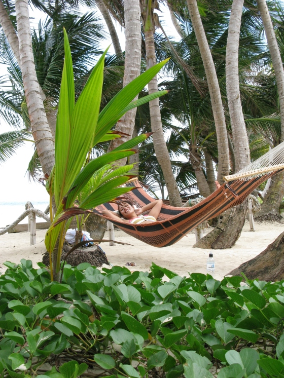 Found hammocks
