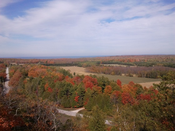 View #2 from Lookout Tower