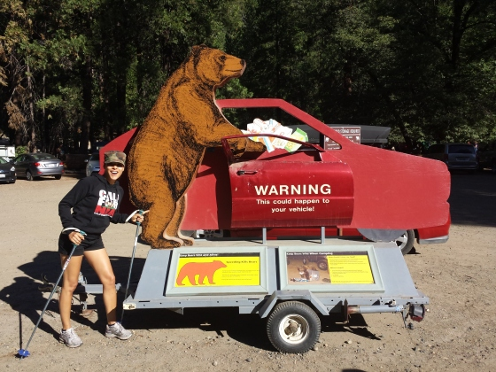 Don't leave anything in your car at the base of the trail or a cutout bear will break in!