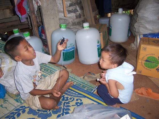 Local boys playing with a bug on a string as a toy.