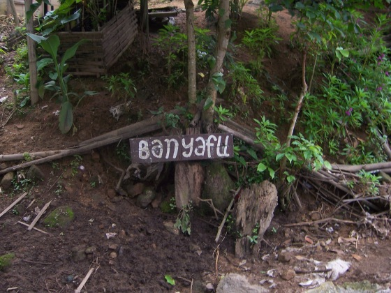 Banyafu - the second village we visited.