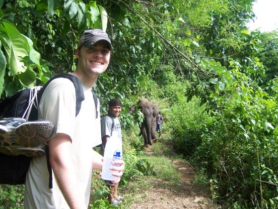 Elephant on the trail.